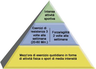 Piramide del movimento: Heart@Work